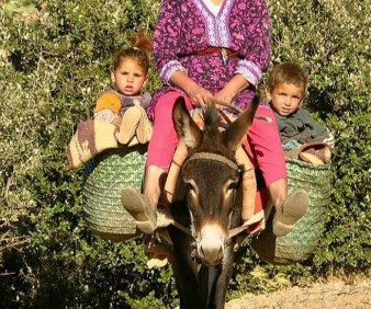 Cultural tours to Morocco with small groups